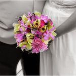 Wedding Flowers by Nichole profile image.