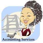 TMF ACCOUNTING SERVICES profile image.