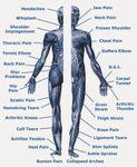Scot Borders Therapy profile image.