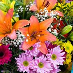 Occasions Flowers profile image.