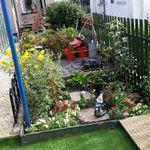 Evans gardening profile image.